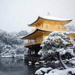 Heavy snow across Japan this week