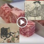 Wa-gyu, tasty Japanese beef