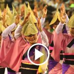 The Largest Dance Festival in Japan