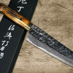 New Takeshi Saji VG10 Mirror Hammered Damascus Knives with Brown Antler Handle